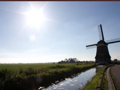 Molino Holandés