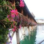 Puente de la Capilla